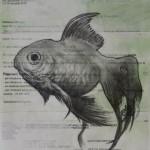 illustrations travail personnel nicolas karagiannis (2)