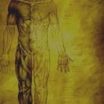 illustrations travail personnel nicolas karagiannis (5)